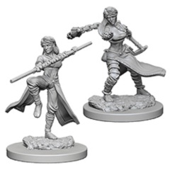 D&D Nolzur's Marvelous Unpainted Minis: Human Female Monks (pack of 2)