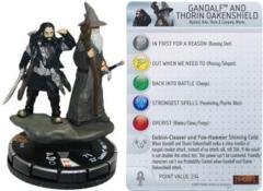 Gandalf and Throin Oakenshield 028