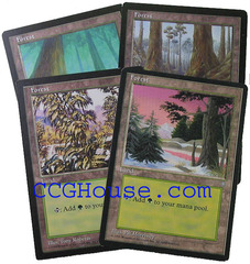 Forest Lot of 10