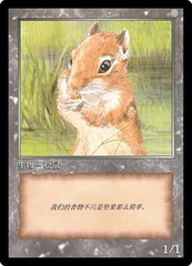 Token - JinHe Age - Squirrel