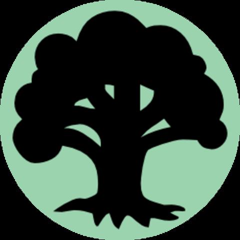 Wholesale Basic Land (10 Forest)
