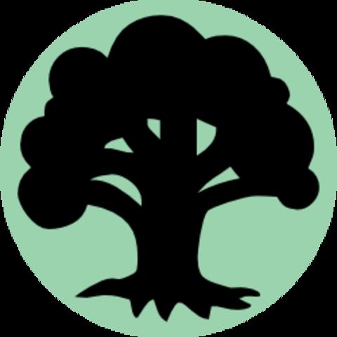 Wholesale Basic Land (100 Forest)
