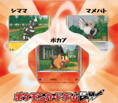 Japanese Pokemon BW Collection Sheet - Tepig