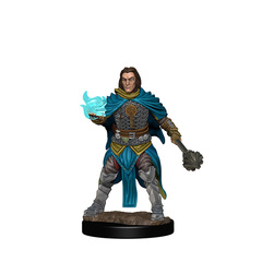 WZK72600 - PF Human Male Cleric