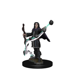 WZK72605 - PF Elf Male Sorcerer