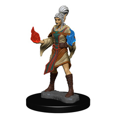WZK72606 - PF Elf Female Sorcerer