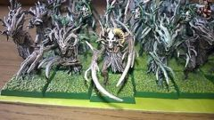Warhammer Elves and Ents army Painted
