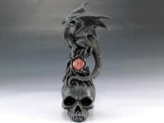 Black Dragon on Skull