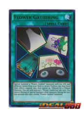 Flower Gathering - DRL3-EN040 - Ultra Rare