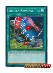 Limiter Removal - SDKS-EN028 - Common - 1st Edition