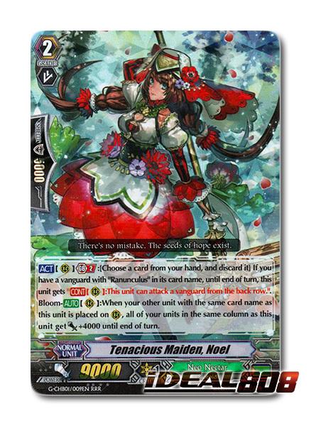 Tenacious Maiden, Noel - G-CHB01/009EN - RRR