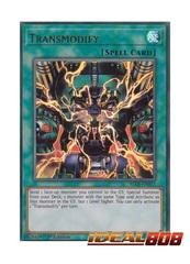 Transmodify - BLLR-EN077 - Ultra Rare - 1st Edition