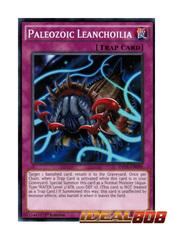 Paleozoic Leanchoilia - MP17-EN171 - Common - 1st Edition