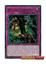 Amazoness Onslaught - LEDU-EN011 - Rare - 1st Edition