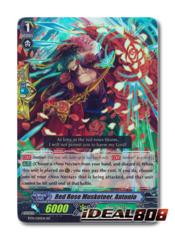 Red Rose Musketeer, Antonio - BT14/020EN - RR