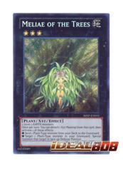 Meliae of the Trees - SHSP-EN055 - Secret Rare - Unlimited Edition