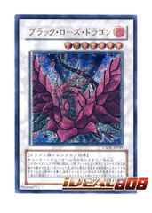 Black Rose Dragon - Ultimate Rare - CSOC-JP039 on Ideal808