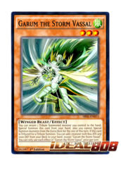 Garum the Storm Vassal - SR01-EN015 - Common - 1st Edition