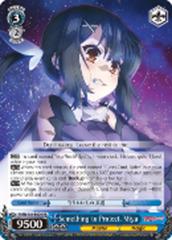 Something to Protect, Miyu [PI/EN-S04-E029 RR] English