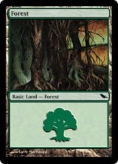 Forest (298) - Foil on Ideal808