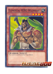 Elemental HERO Wildheart - SDHS-EN011 - Common - 1st Edition