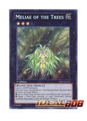 Meliae of the Trees - SHSP-EN055 - Secret Rare - 1st Edition