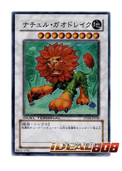 Naturia Leodrake - DT Super Rare - DT04-JP038 on Ideal808