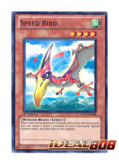 Speed Bird - YS11-EN008 - Common - 1st Edition