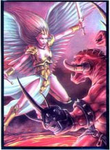 Angel vs Demon Large Sleeves (50ct)