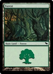 Forest (301) - Foil on Ideal808