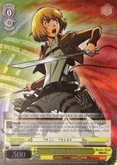 Armin Arlelt - AOT/S35-TE01R - RRR