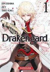 001-Drakengard