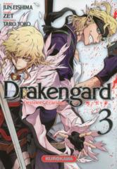 003-Drakengard