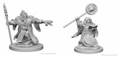 Dwarf Wizard (Male)