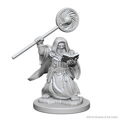 Dwarf Wizard (Male)