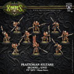 Praetorian Keltarii / Swordsmen 74078