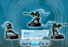 (280314) Ninjas