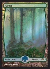 Forest - Full Art - Foil DCI Judge Promo