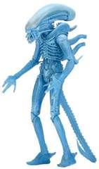 NECA Aliens Series 11 Xenomorph Warrior Action Figure