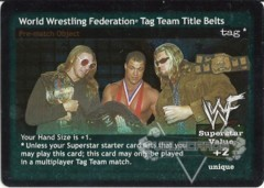 World Wrestling Federation Tag Team Title Belts (IAATG)
