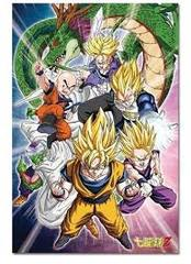 Dragonball Z: Warriors and Shenron - 1000 Piece