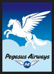 Pegasus Airways - (Legion) Standard Sleeves - 50ct