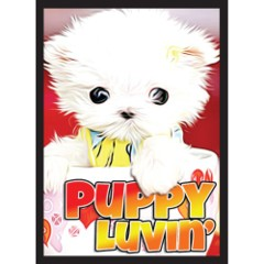 Puppy Luvin' - (Legion) Standard Sleeves - 50ct